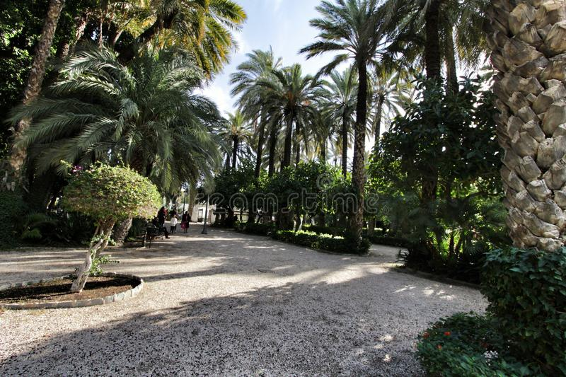 Beautiful and leafy municipal park in Elche between palm trees stock image