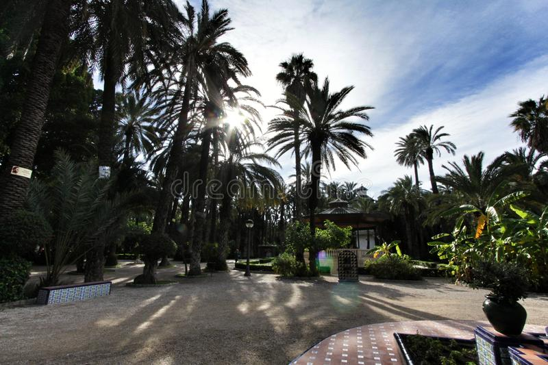 Beautiful and leafy municipal park in Elche between palm trees royalty free stock photography
