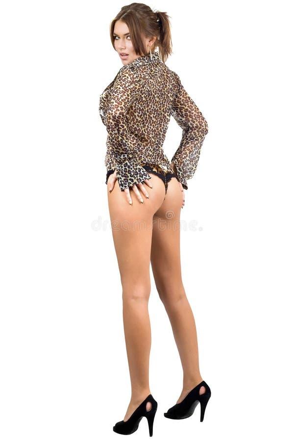 Download Beautiful Leggy Woman In Leopard Shirt Stock Photo - Image: 14275536
