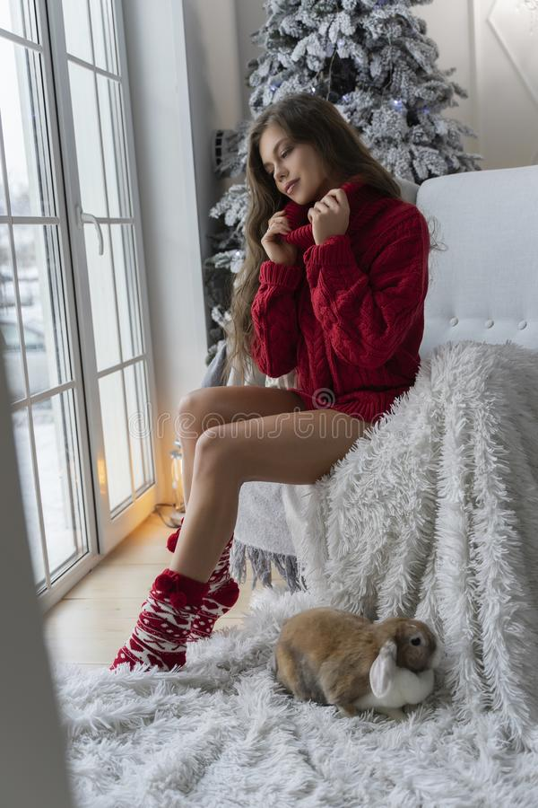 Beautiful leggy young girl, wearing red sweater and wool socks sits at the window and gently holds a rabbit in her hands in stock photo