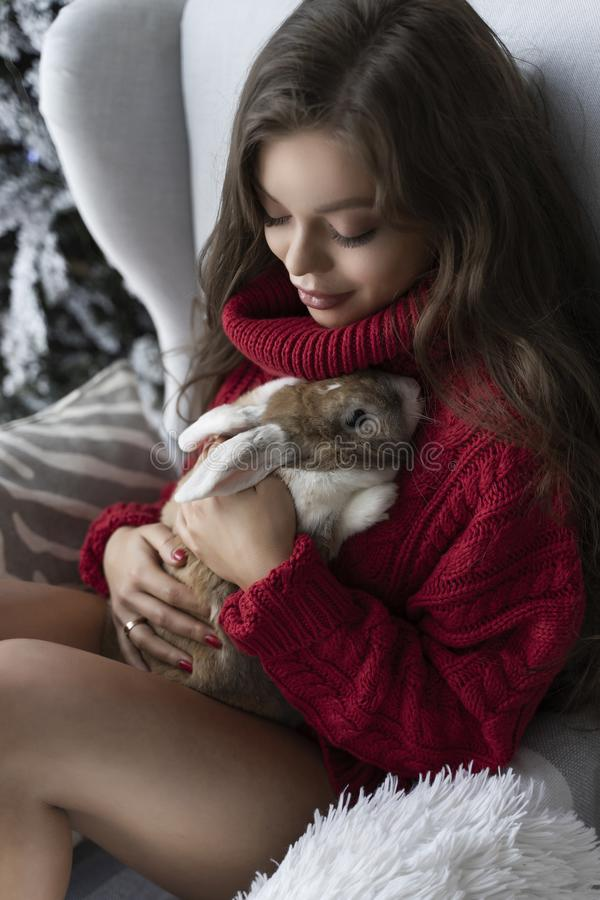 Beautiful leggy young girl, wearing red sweater and wool socks sits at the window and gently holds a rabbit in her hands in royalty free stock image