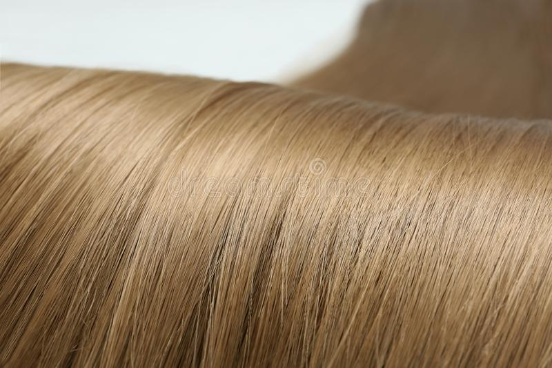 Beautiful light brown hair. Professional hairdresser. Beautiful light brown hair, closeup view. Professional hairdresser stock photos