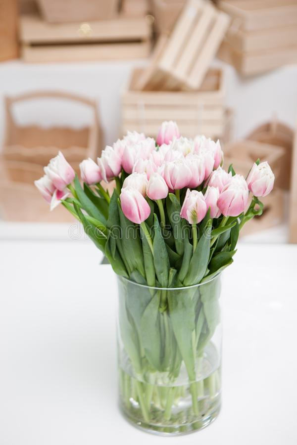 Beautiful light rosy tulips in glass vase royalty free stock photo