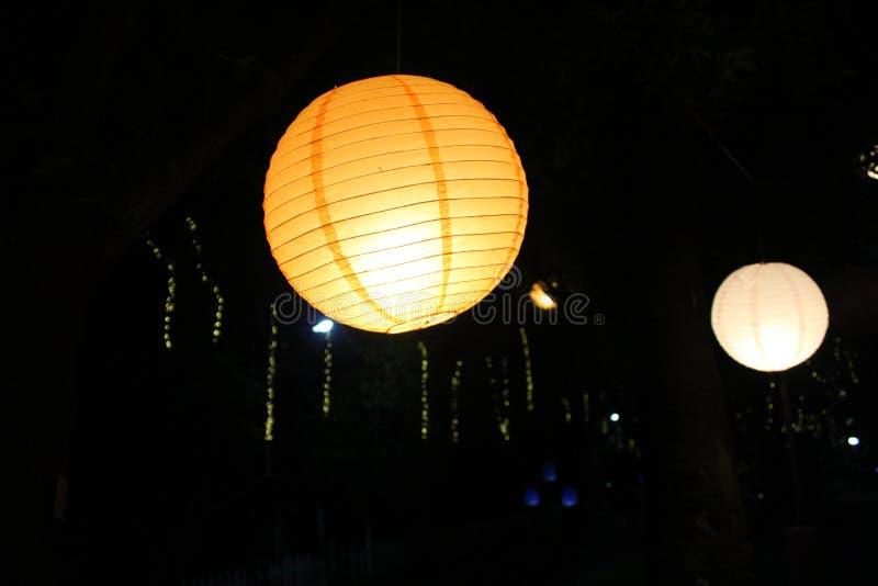 Beautiful light tree lantern in night between trees royalty free stock image