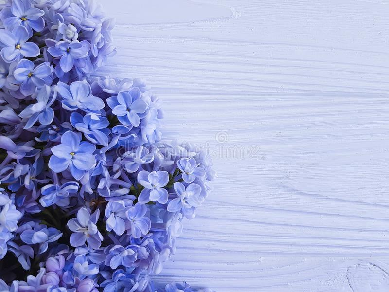 Beautiful lilac bouquet blossom vintage on white wooden frame background royalty free stock images