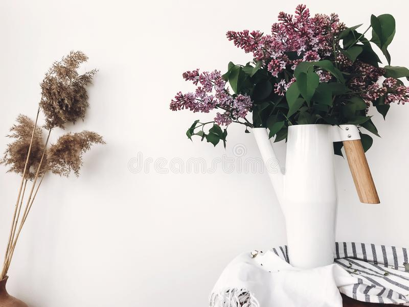 Beautiful lilac flowers in white stylish watering can on white background indoors. Modern decor design, purple lilac in metal. Funnel vase with bamboo handle royalty free stock image