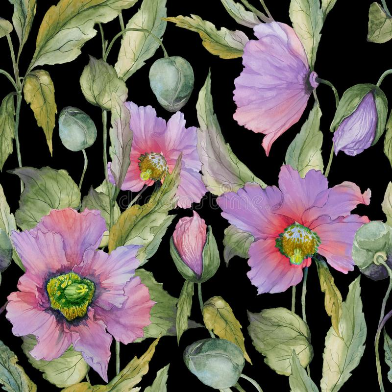 Beautiful lilac poppy flowers with green leaves on black background. Seamless floral pattern. Watercolor painting. royalty free illustration
