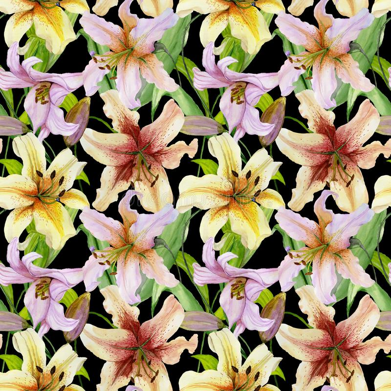 Beautiful lily flowers with green leaves on black background. Seamless floral pattern. Watercolor painting. vector illustration