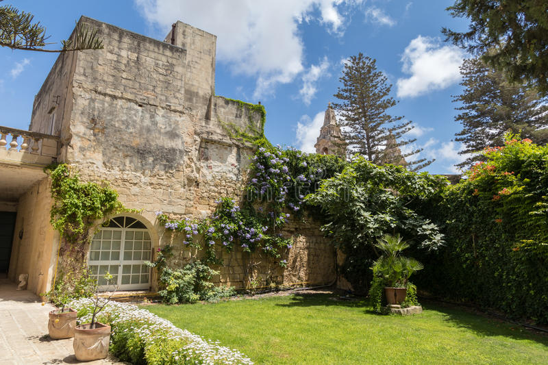Beautiful limestone wall with vines in front of Naxxar parish ch. Blue skies behind a Beautiful limestone wall with vines in front of Naxxar parish church royalty free stock image