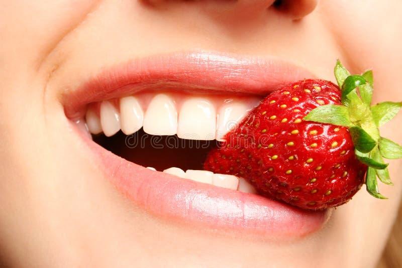 Beautiful lips holding a straw stock image