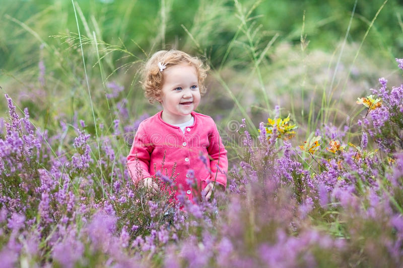 Beautiful little baby girl in purple autumn flowers royalty free stock photos