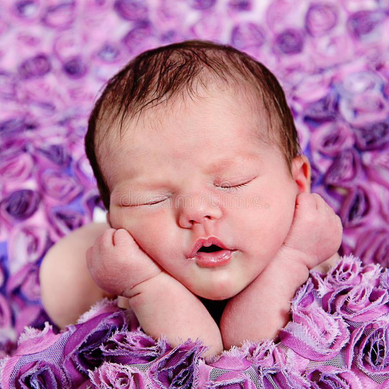 Beautiful little baby girl in studio royalty free stock photos