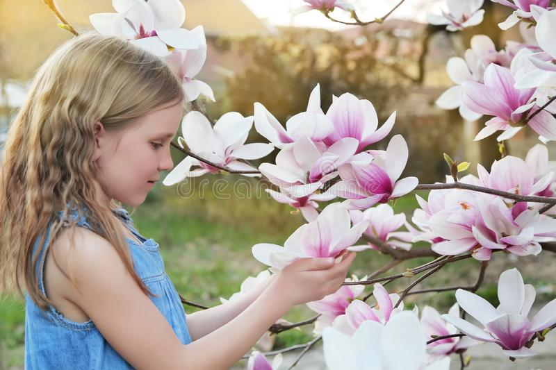 Beautiful little blond girl in blue dress holding flowers of magnolia under blossom magnolia tree. royalty free stock image