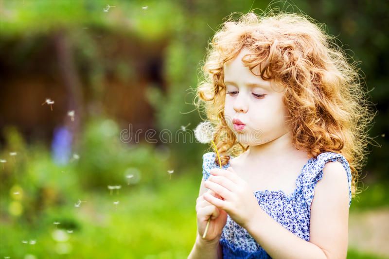 Beautiful little curly girl blowing dandelion royalty free stock images