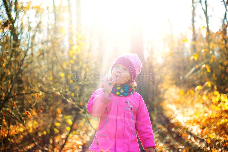 Beautiful little girl in the autumn forest against a background of yellow glowing leaves and the bright warm sun royalty free stock images