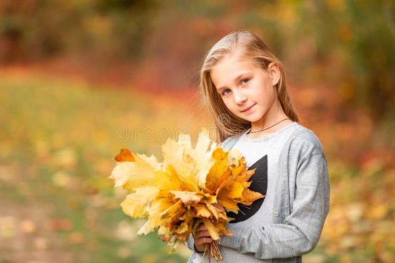 Beautiful little girl with autumn leaves in the park. Outdoor stock photos
