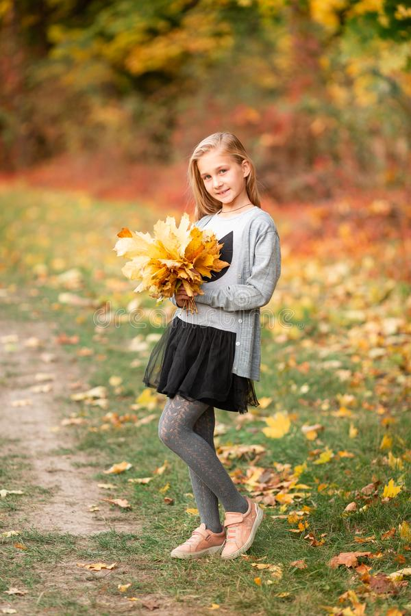 Beautiful little girl with autumn leaves in the park. Outdoor stock photography