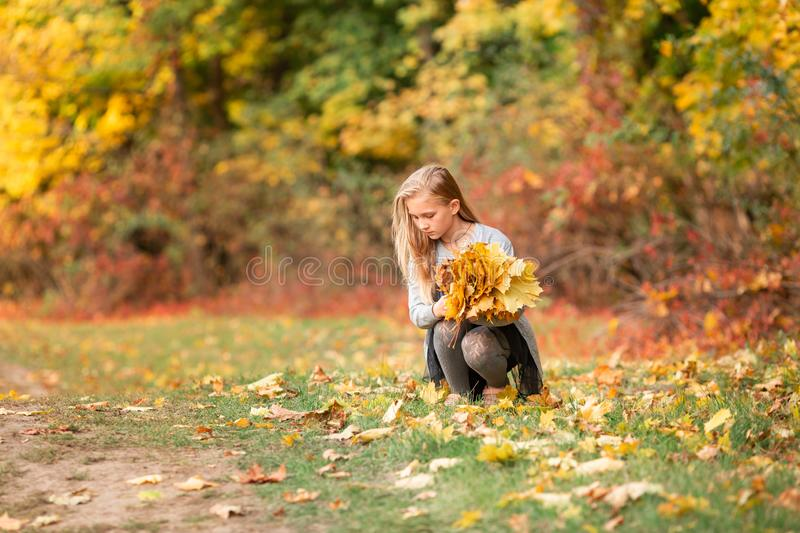 Beautiful little girl with autumn leaves in the park. Beautiful little girl gathering autumn leaves in the park outdoor royalty free stock photos