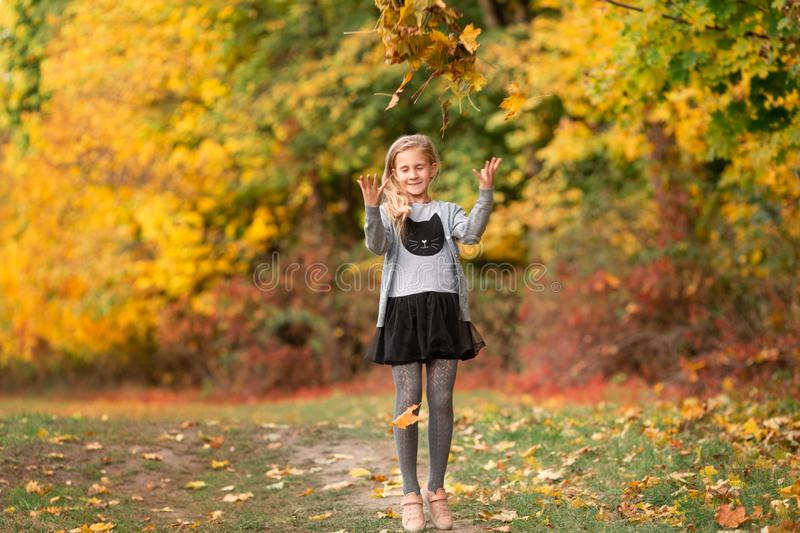 Beautiful little girl with autumn leaves in the park stock image