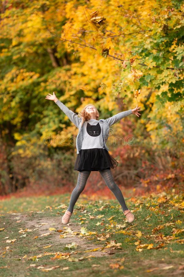 Beautiful little girl with autumn leaves in the park royalty free stock photos