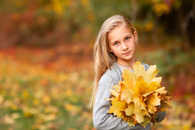 Beautiful little girl with autumn leaves in the park. Outdoor stock image