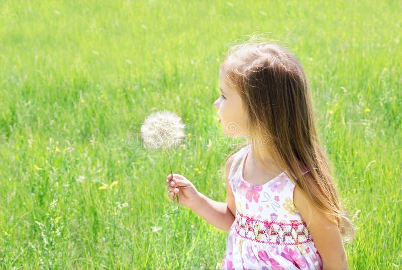 Beautiful little girl blowing dandelion stock image