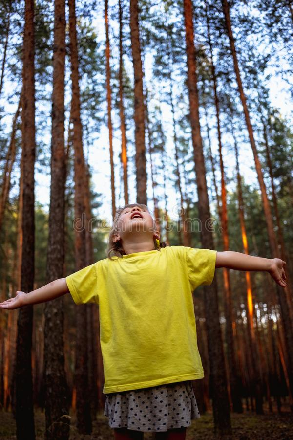 Beautiful little girl in pine forest with hands up enjoys nature stock image
