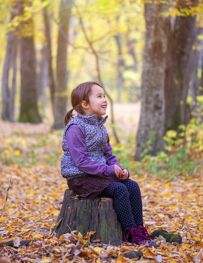 Beautiful little girl stands on a trunk of tree smiling royalty free stock photography