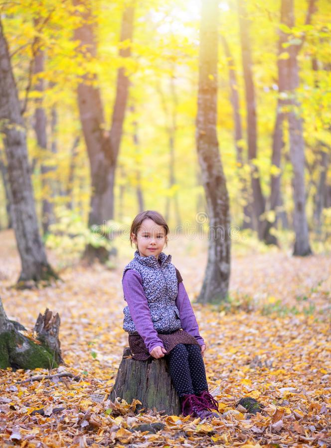 Beautiful little girl stands on a trunk of tree smiling stock image