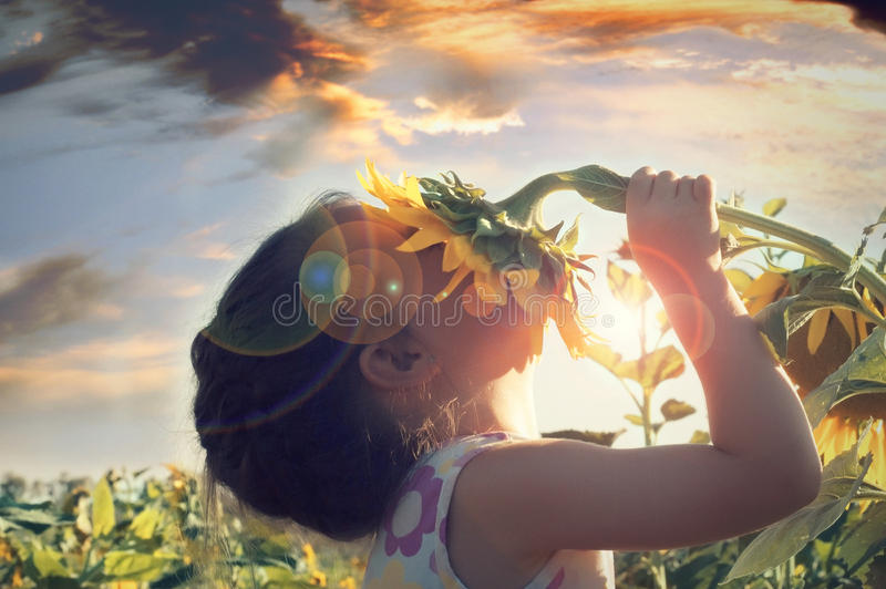 Beautiful little girl and sunflower stock photography