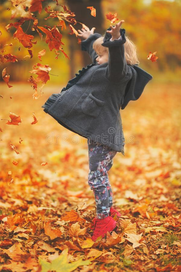 Beautiful little girl throwing yellow autumn leaves in the air in the park; autumn background royalty free stock images