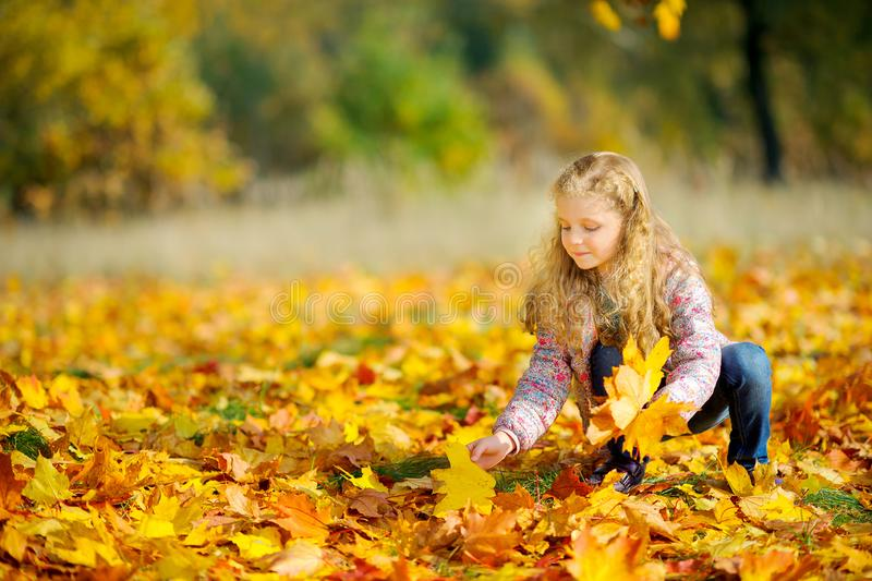 Beautiful little girl is walking in the autumn park stock photography