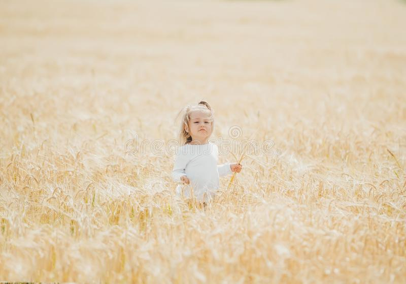 Beautiful little girl in a wheat field in sunny day. Beauty baby girl portrait in wheat field. Concept of the happy childhood royalty free stock images