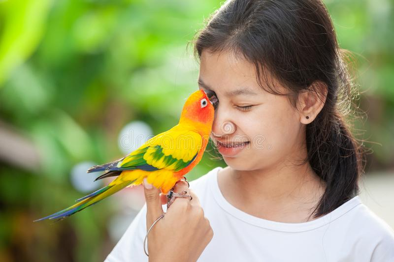 Little parrot birds standing on woman hand. Asian teenager girl play with her pet parrot bird with fun and love stock photo