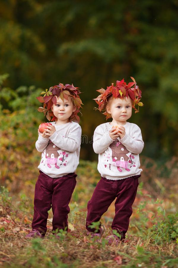Beautiful little twin girls  holding apples in the autumn garden.  Little girls playing with apples. Toddler eating fruits at fall stock photography