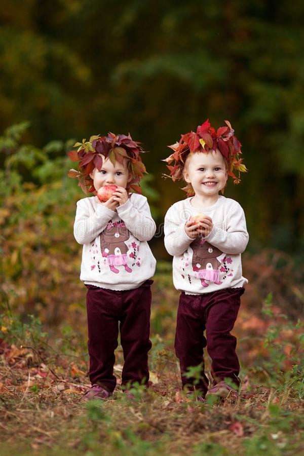 Beautiful little twin girls  holding apples in the autumn garden.  Little girls playing with apples. Toddler eating fruits at fall royalty free stock photos
