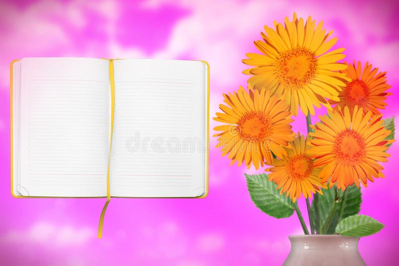 Beautiful live daisy or chamomile bouquet bouquet in porcelain vase with opened note book with blank place for your information on stock images