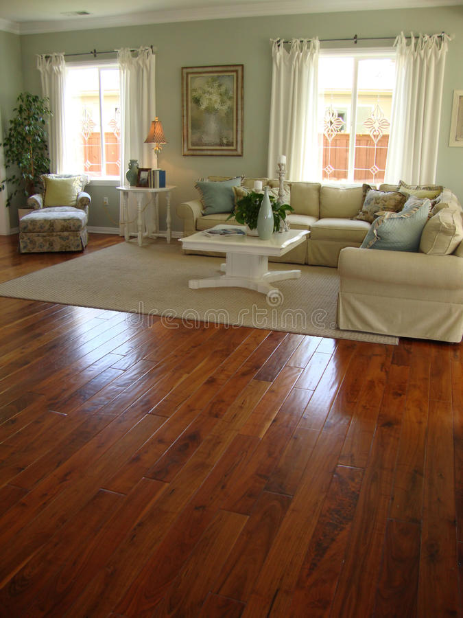 Download Beautiful Living Room With Wood Floors Stock Image - Image: 14043855