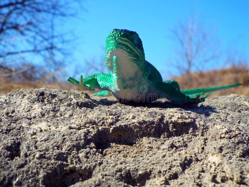Beautiful lizard toy stock photo
