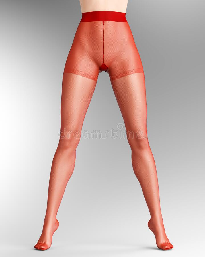 Legs Sexy Stock Illustrations 3836 Legs Sexy Stock