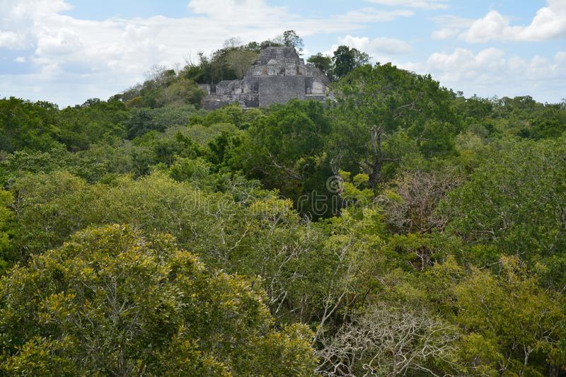 Calakmul Archaeological Site in Campeche Mexico. The beautiful and lost maya city of Calakmul hidden in the jungle of southern Mexico in the province of Campeche stock image