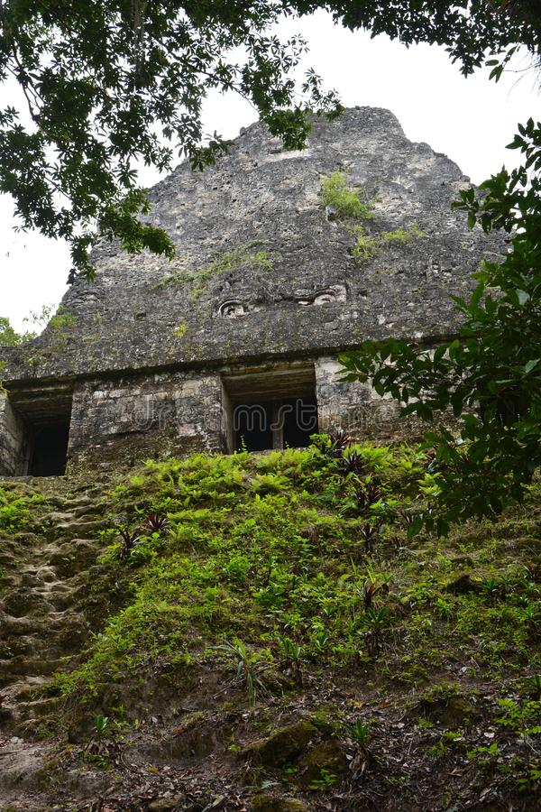 Tikal Archaeological Site in Guatemala stock image