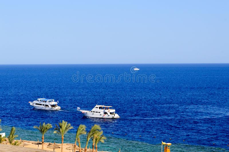 Beautiful luxurious white yachts sail along the blue salt sea against the backdrop of palm trees and a beach in a tropical paradis stock photography