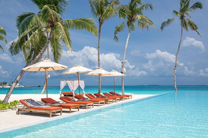 Tropical beach resort with lounge chairs umbrellas and infinity pool in luxury resort beach scenery. Perfect summer landscape stock images