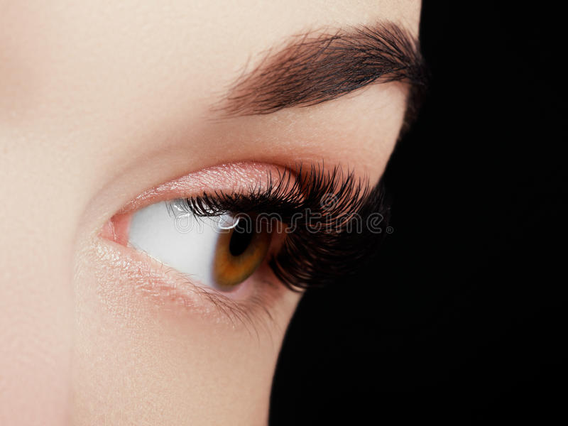 Beautiful macro shot of female eye with extreme long eyelashes and black liner makeup royalty free stock image
