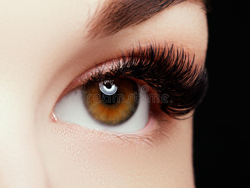 Beautiful macro shot of female eye with extreme long eyelashes and black liner makeup. Perfect shape make-up and long lashes. Cosmetics and make-up. Closeup stock images
