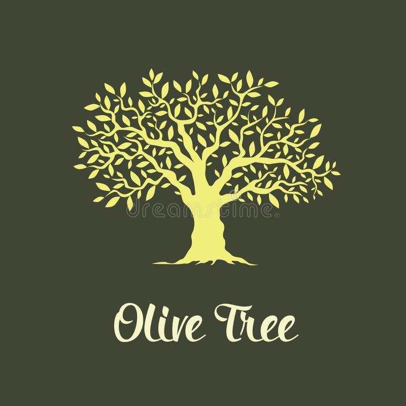 Beautiful magnificent olive tree stock illustration