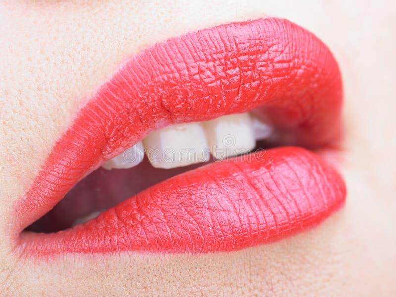 Beautiful makeup on lips stock image