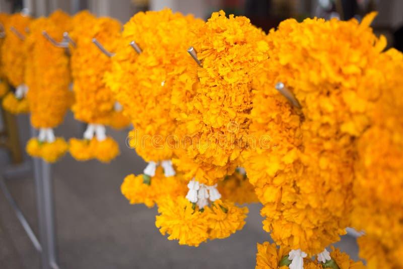 Beautiful marigold garland royalty free stock photos