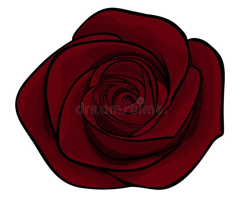 Download Beautiful Maroon Roses Alone Stock Vector - Image: 28189677